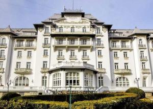 Hotel Palace ARA 41 Sinaia